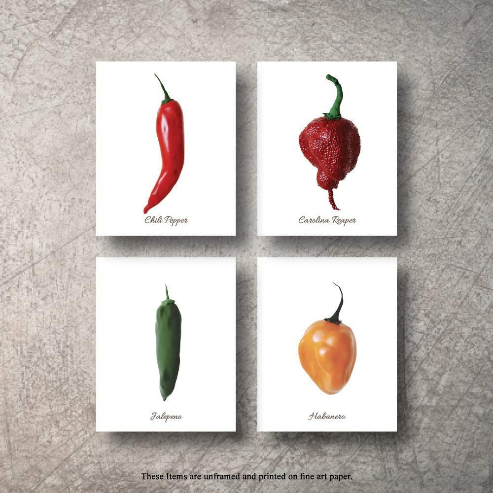 Botanical Prints 4pc Chili Peppers Wall Decor Kitchen Art Food Herb Pepper Set UNFRAMED Pictures Nature Floral Pepper Plant Flower Green Small Botanical Prints Wall Art Vintage Print (5x7 title)
