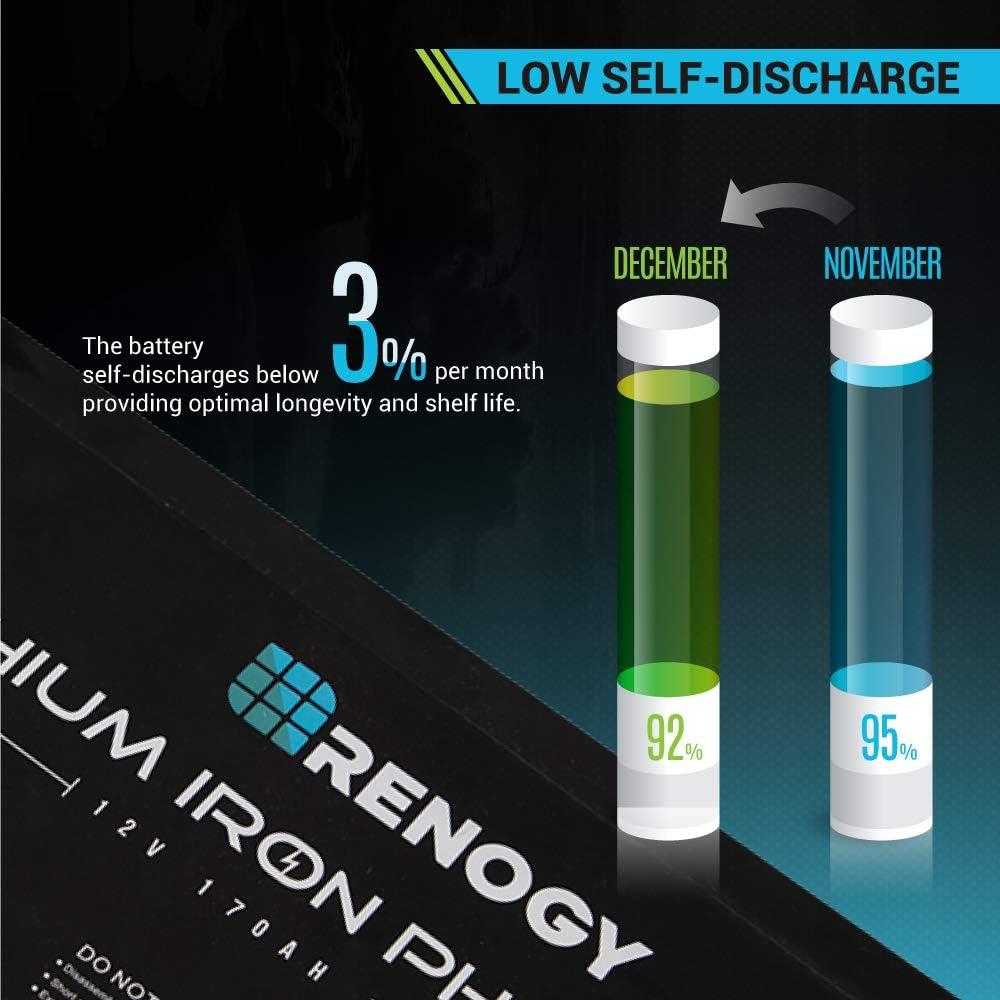 Renogy - Batería de fosfato de Hierro de Litio (12 V): Amazon ...