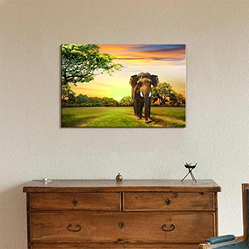 Elephant on Sunset Wall Decor