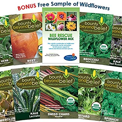 """Organic Garden Vegetable Seeds """"Super Greens"""" - 10 Seed Packets Plus 8 Gardening Guide eBooks - Non-GMO, No Fillers - Bulk Veggie Pack of Herbs, Beets, Broccoli, Kale, Mesclun, Chard, Mustard, Spinach"""