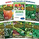 Organic Garden Vegetable Seeds Super Greens - 10 Seed Packets Plus 8 Gardening Guide eBooks - Non-GMO, No Fillers - Bulk Veggie Pack of Herbs, Beets, Broccoli, Kale, Mesclun, Chard, Mustard, Spinach