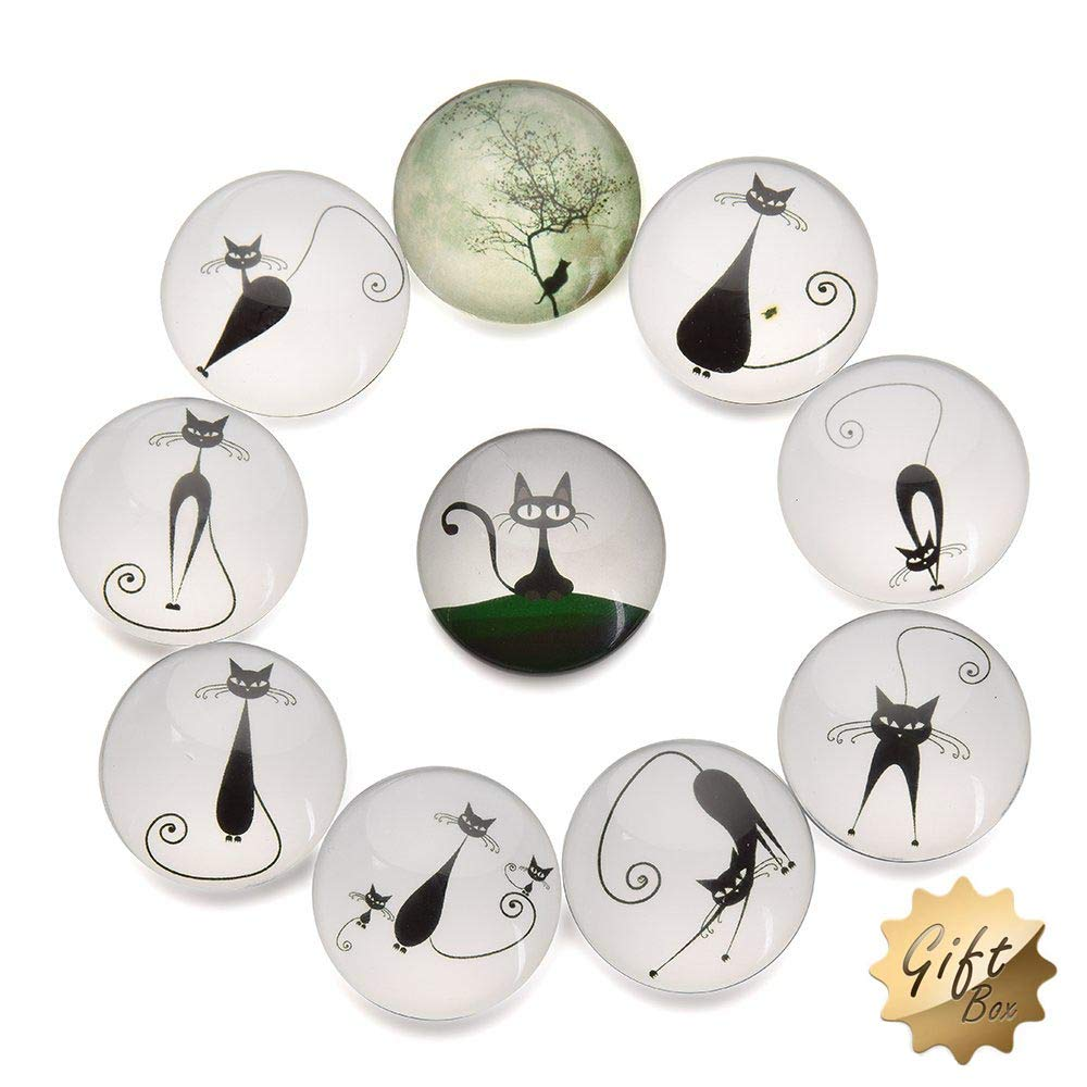 FF Elaine 10 Pcs Fridge Magnets Crystal Glass Housewarming Home Decorations Gift. (Cat)