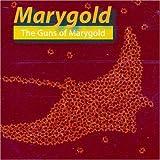 Guns of Marygold