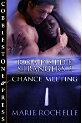 Chance Meeting [Roadside Strangers 2]