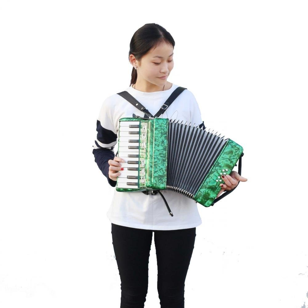 Dilwe Piano Accordion, Maple Wood 22 Key 8 Bass Keyboard Accordion Musical Instrument Toy with Straps Gloves Clean Cloth for Beginners Students(Green) by Dilwe (Image #2)