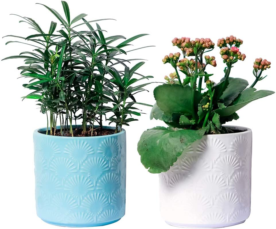 Amazon Com Yxmyh White And Blue Ceramic Flower Pot Garden
