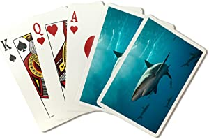 Caribbean Reef Sharks (Playing Card Deck - 52 Card Poker Size with Jokers)