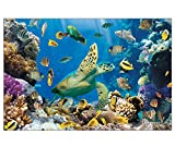 Undersea Backdrop (3 Pcs. Per Set) Assembled, 9 Ft. X 6 Ft. Plastic