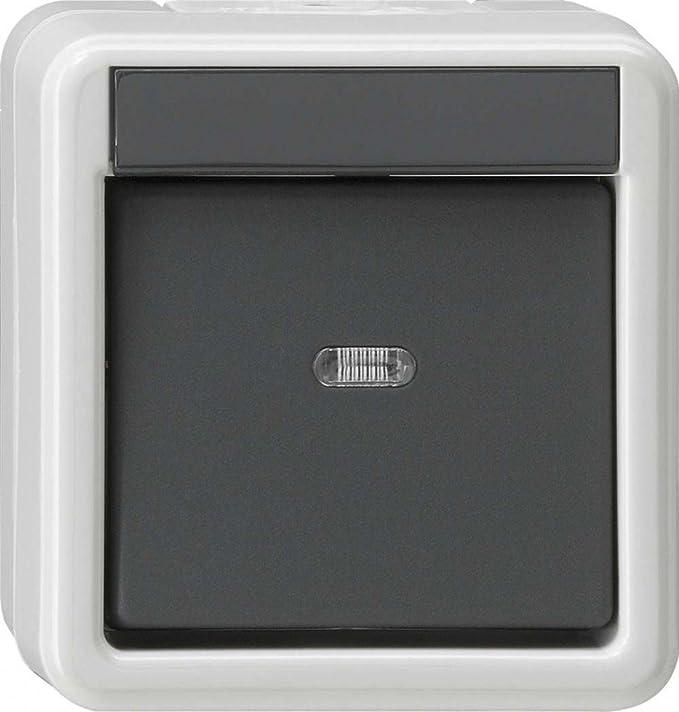 Fantastisch Zwei Einpolige Schalter Fotos - Elektrische ...