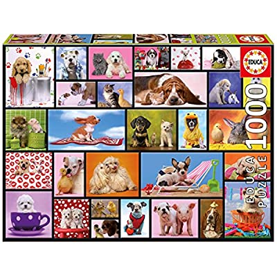 Educa Shared Moments Puzzle: Varios: Toys & Games
