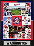 MLB Washington Nationals Sports Memorabilia Team Plague, Standard, Black