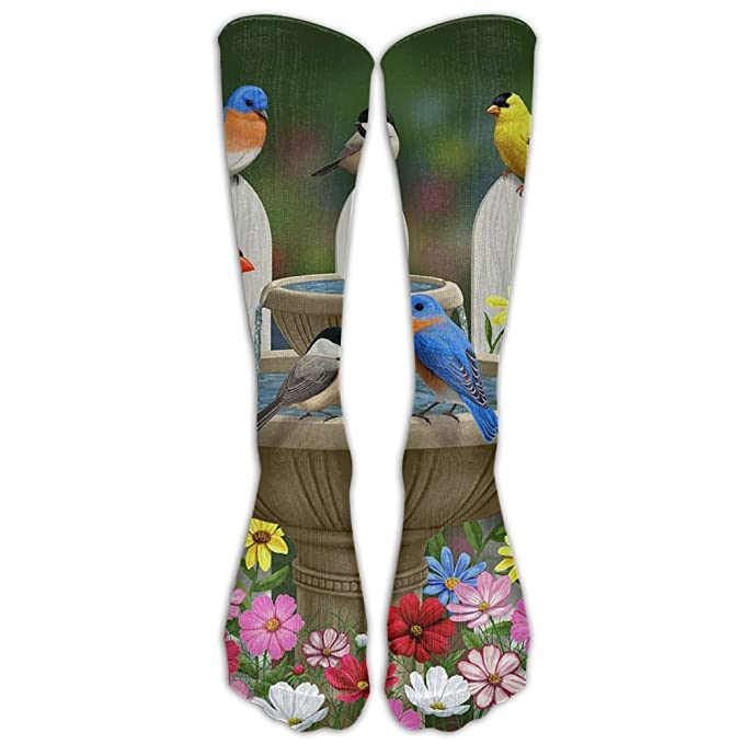 Amazon.com: Calcetines de algodón unisex para correr de ...