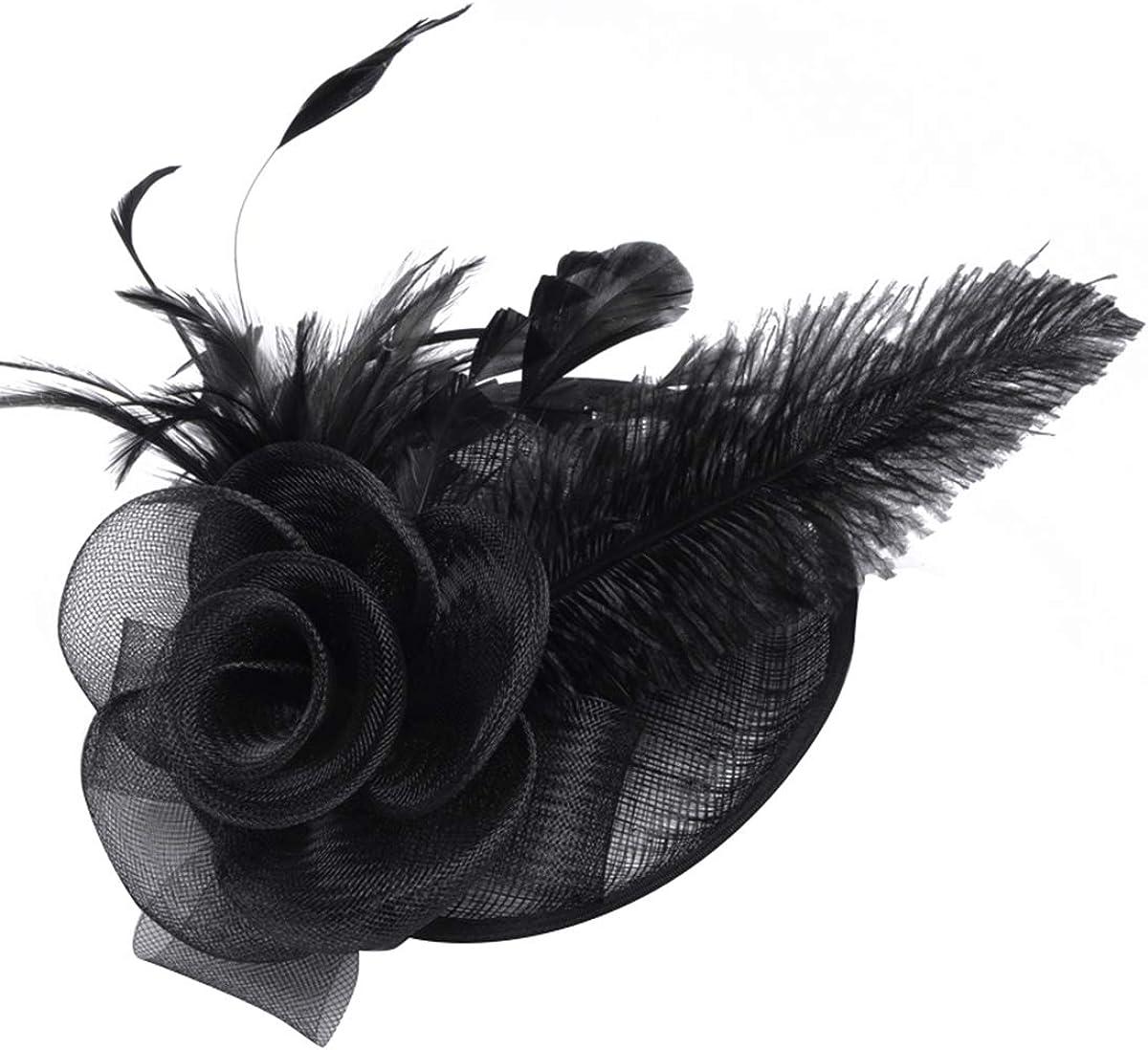 Dressystar Women's Fascinator Hat Cocktail Tea Party Wedding Headbands Mesh Feather Headwear Hair Clip