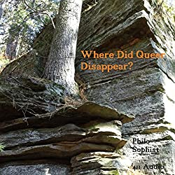 Where Did Queer Disappear?