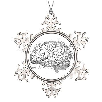 Amazon.com: Shety Lot Tree Branch Decoration Vintage Brain Anatomy ...