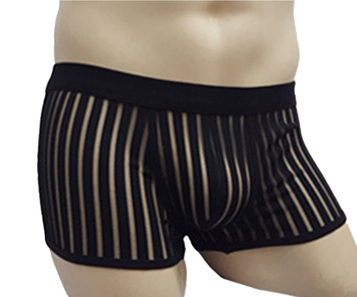 Puda Mesh Breathable Striped Transparent Men's Boxer Briefs