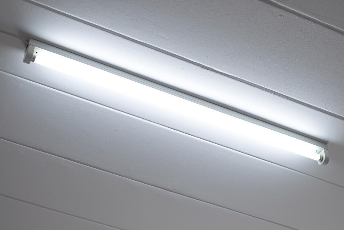 TriGlow (Case of 10) F32T8/SP41 Linear Fluorescent 32-Watt T8 FO32 741 Light Bulb 48''