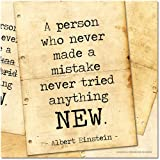 ECHO-LIT Never Made a Mistake Motivational Poster Featuring a Quote by Albert Einstein. Eco-Friendly Art Print