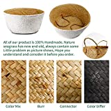 POTEY 710202 Seagrass Plant Basket - Hand Woven