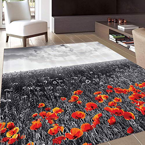Rug,FloorMatRug,Poppy,AreaRug,Flower Field Pattern with Greyscale Background Remembrance Day Theme Nostalgic,Home mat,5'x8'Blue and Lilac,RubberNonSlip,Indoor/FrontDoor/KitchenandLivingRoom/B