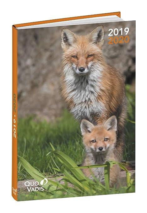 Agenda Escolar 1 Día/Página 2019-2020 Amigos, 12x17cm, diseño Gato