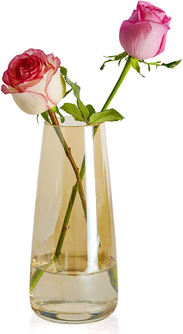 "Eternal Moment Small Glass Bud Vase, Modern Flower Glass Vase for Weddings, Events, Decorating, Arrangements, Flowers, Office, or Home Decor (Amber,8.66"" H,Glass Vase)"