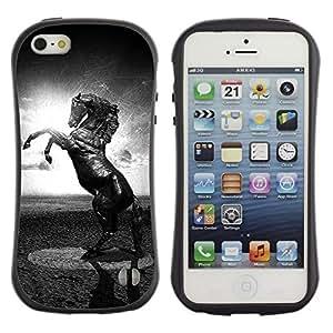 Paccase / Suave TPU GEL Caso Carcasa de Protección Funda para - Horse Black White Mustang Powerful Sun - Apple Iphone 5 / 5S