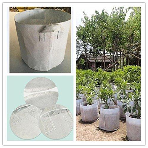 50 gallon planter pots - 8