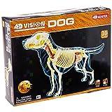 Tedco 4D -Full Skeleton Dog