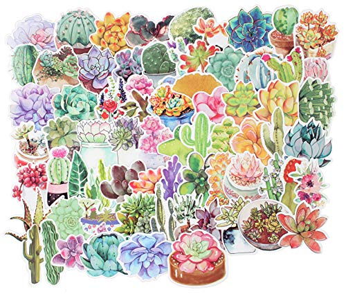 (Stickers Decals - 70 Pcs Laptop Vinyl Stickers car Sticker for Snowboard Bike Phone Mac Computer Keyboard Car Window Bumper Wall Luggage Decal Graffiti Patches (70 Pcs Succulents))