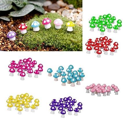 Amazon com: Figurine - Fairy Garden Miniatures Mini Mushroom