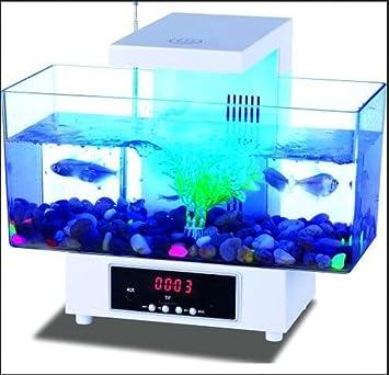 AN-LKYIQI Cuadrada de acrílico transparente Eco escritorio reloj LED táctil luz despertador USB personalizada pequeños peces del acuario: Amazon.es: ...