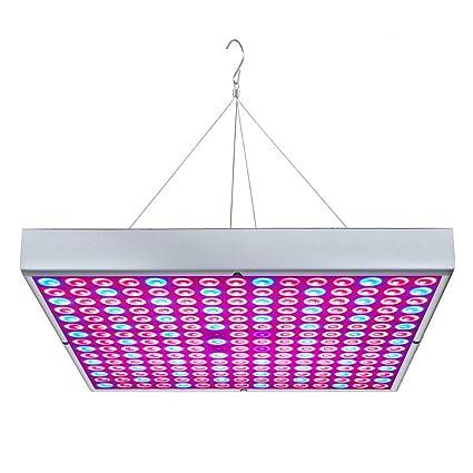 Amazon.com: Osunby - Lámpara LED para crecimiento de plantas ...