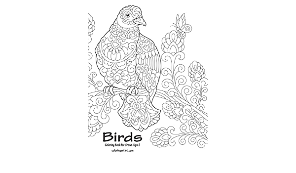 - Amazon.com: Birds Coloring Book For Grown-Ups 2 (Volume 2) (9781721980376):  Snels, Nick: Books