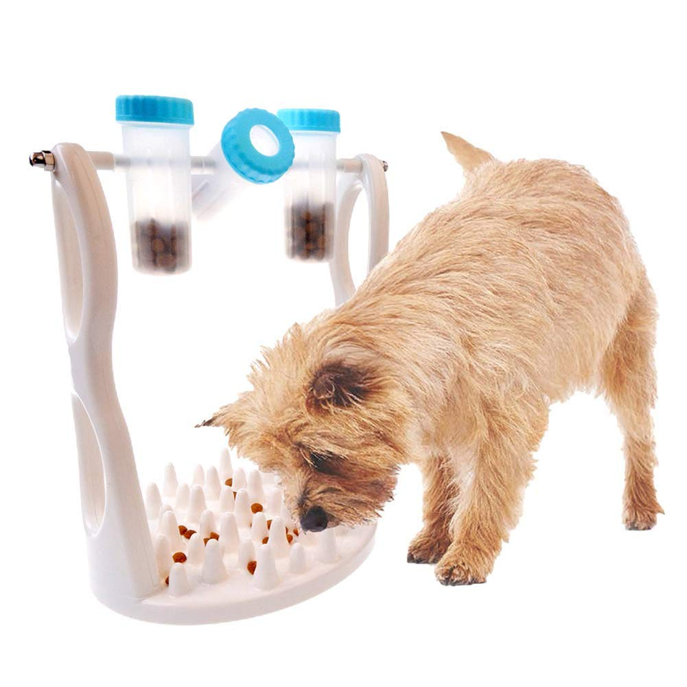 Amazon.com : DCTOY Pet Dog Interactive Puzzle Toys for IQ Training and Entertainment by Spinning Bottle, Funny Slow Food Feeder to Prevent Obesity : Pet ...