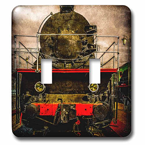 raphy - Transport Railroad - Vintage steam train locomotive. On the sidelines. Stylized photo - Light Switch Covers - double toggle switch (lsp_270613_2) ()