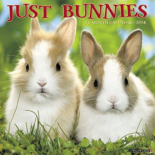 Just Bunnies 2018 Calendar Floppy Pig