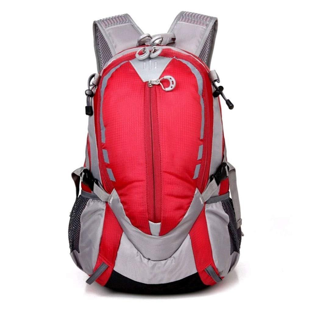 入荷中 DMIZ 赤 アウトドアクライミングショルダーバックパック防水旅行登山バッグ用ハイキング、男性と女性スポーツアウトドアバッグランニング 赤)、そしてクライミングバッグ (色 : 赤) 赤 DMIZ B07QJTL8Y7, PEACEFUL TIMES BY TOWA:c715e3dc --- arianechie.dominiotemporario.com
