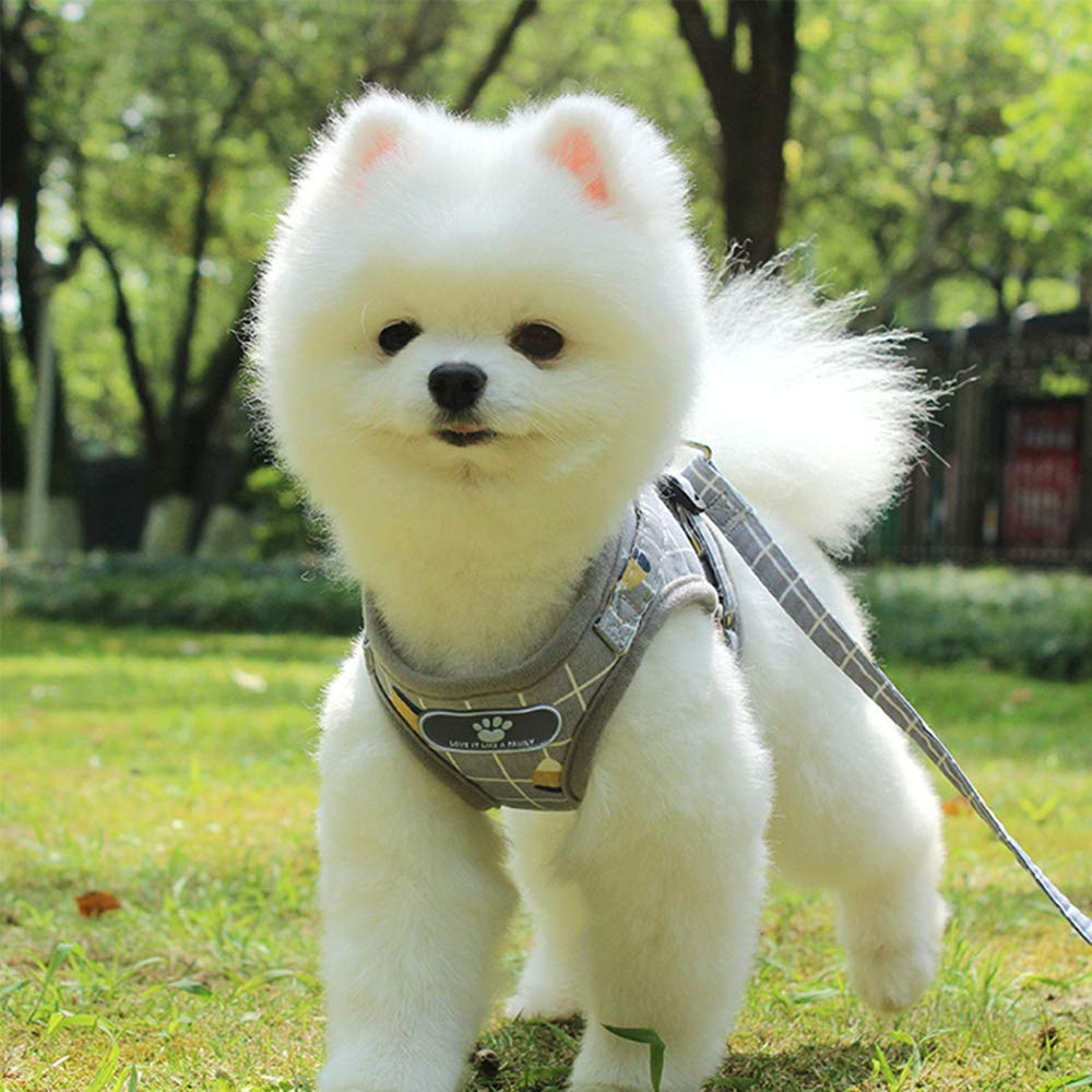 Arn/és Para Perros Peque/ños Y Medianos,Arn/és De Chaleco Ajustable,Arn/és Reflectante Transpirable Para Cachorros Para Caminar De Entrenamiento