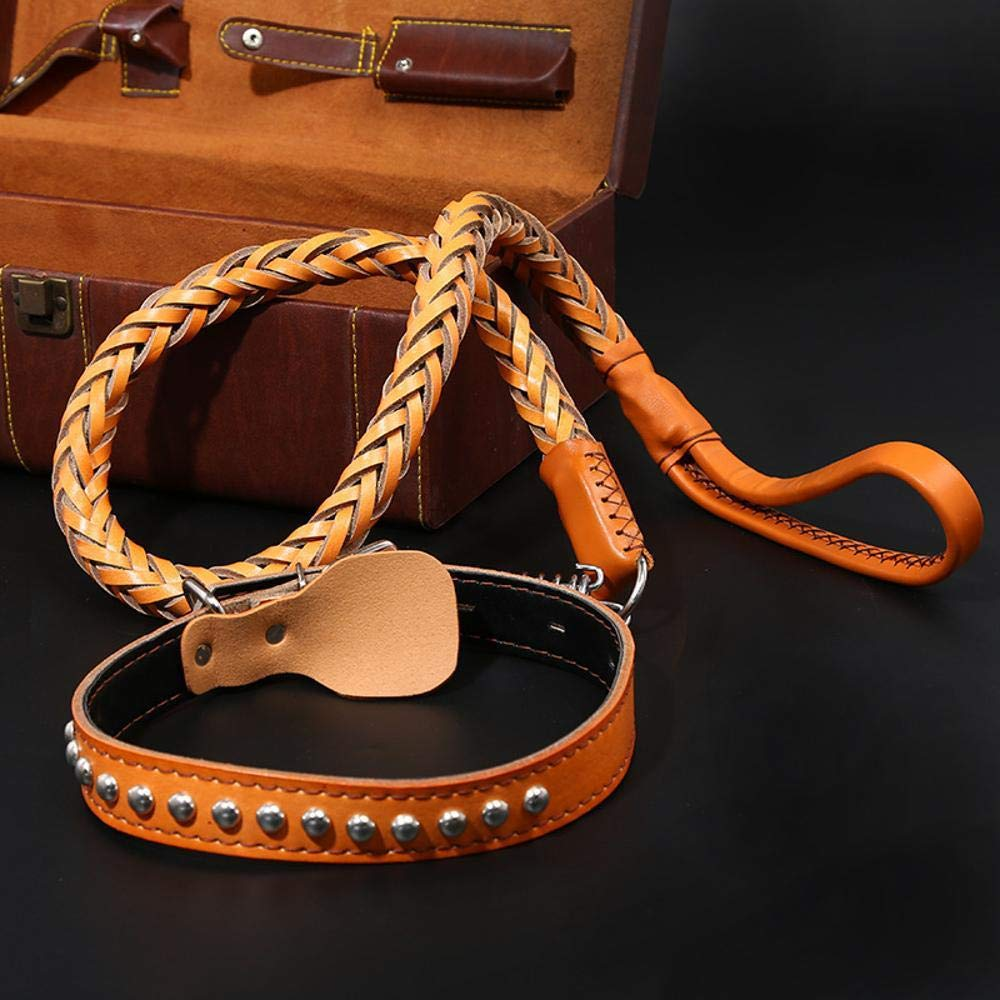 Hjyi Pet Real Leather Traction Rope Large Dog gold Hair Bolt