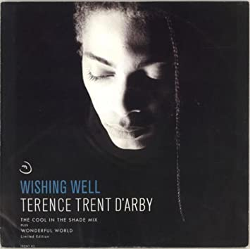 Terence Trent D'Arby - Wishing Well - The Cool In The Shade