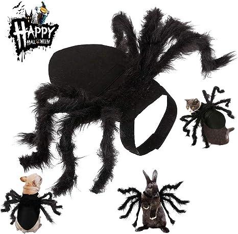 Kuoser Disfraz de ala de Araña para Halloween para Perros pequeños ...