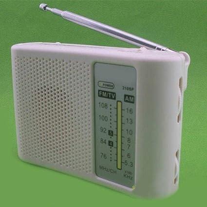 AST Works 210SP AM FM Radio Experimental Board DIY KIT: Amazon in