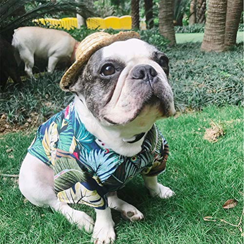 (Yu-Xiang Pet Sun Protection Costume Dog Cool Shirt Hawaiian Style Clothes Seaside Beach CostumesFrench Bulldog Pug (M,)