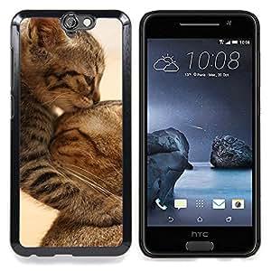 """Qstar Arte & diseño plástico duro Fundas Cover Cubre Hard Case Cover para HTC One A9 (Gatito lindo del bebé del gato de la madre Furry"""")"""