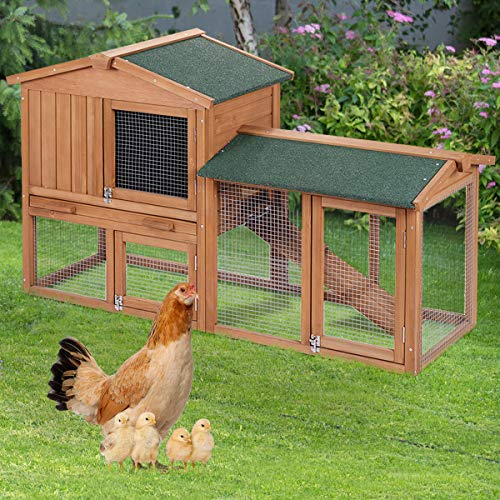 Where to find rabbit hutches large?