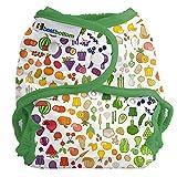 Best Bottom Cloth Diaper Shell-Snap, Farmers Market