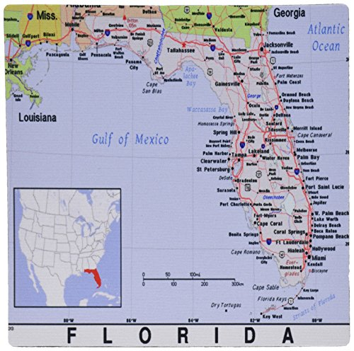 - 3drose Print of Florida Cities and State Map - Mouse Pad