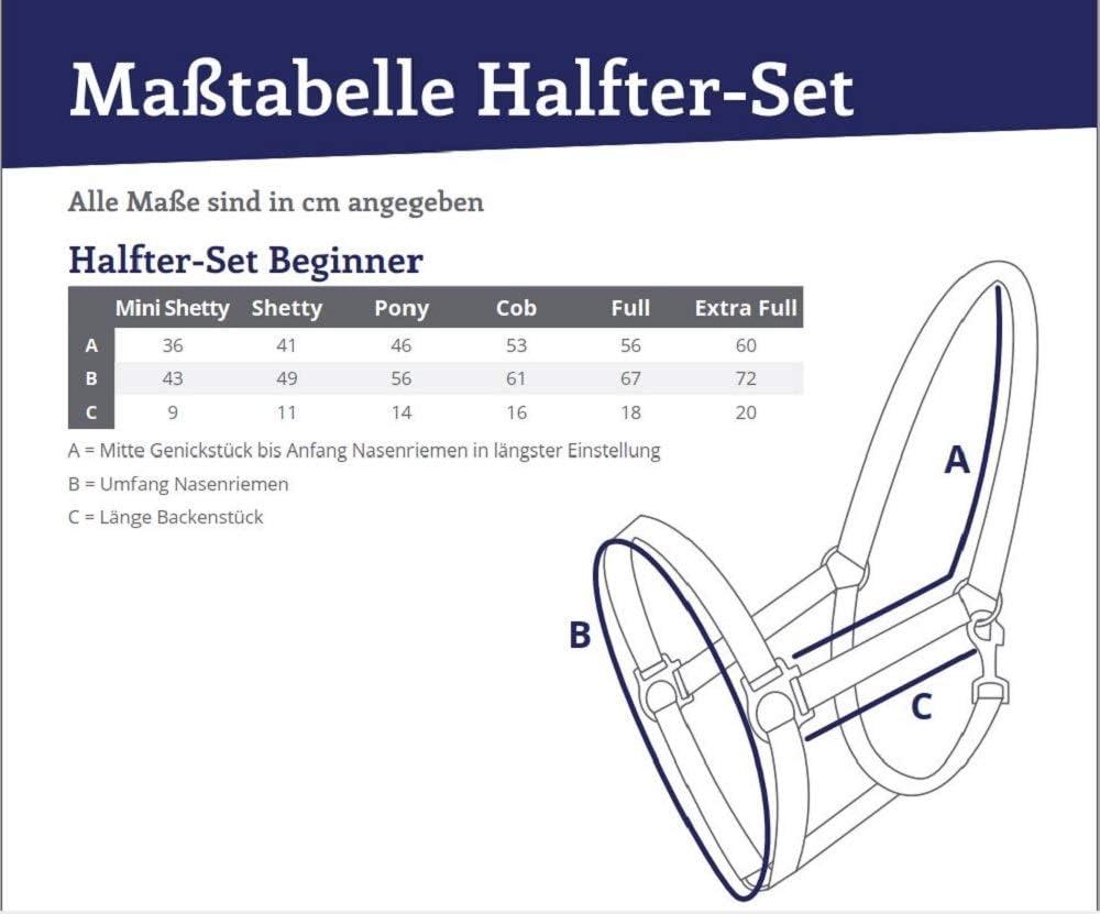 Shetty, T/ürkis QHP TOP Halfter-Set Beginner II Halfter F/ührstrick mit Panikhaken verstellbar Trendige Farben
