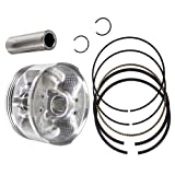 Piston Kit For 2001-2008 Yamaha Rhino Raptor